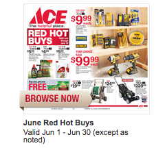 Ace Hardware Sale Flyer