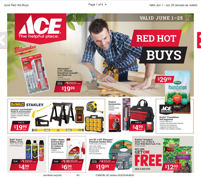 Ace Hardware Flyer June 2019